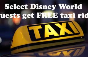 Disney World free taxi ride test