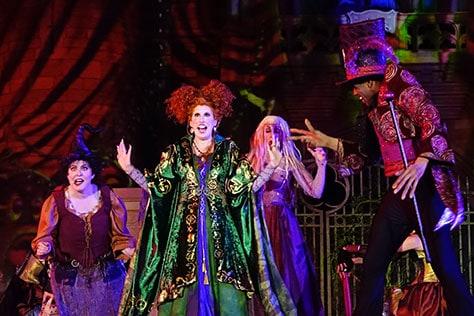 Hocus Pocus Villain Spelltacular at Mickey's Not So Scary Halloween Party 2015 (9)