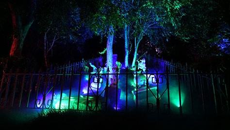 Mickey's Not So Scary Halloween Party at Walt Disney World's Magic Kingdom 2015 (67)