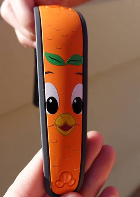 DVC 25th Anniversary Party at Magic Kingdom in Disney World Orange Bird MagicBand #dvc25