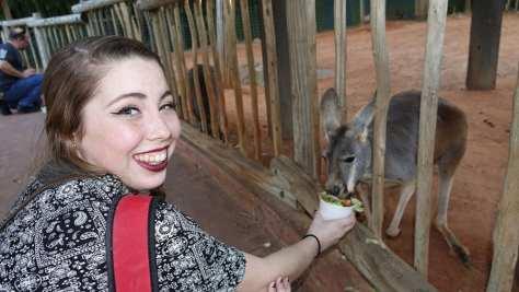 Busch Gardens Food and Wine (179)
