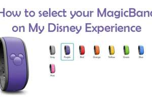 How to customize your MagicBand on My Disney Experience website #disneyworldplanning