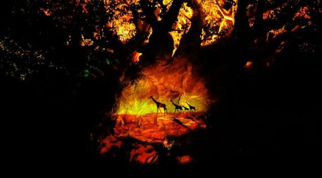 tree of life awakenings at Disney's Animal Kingdom 4
