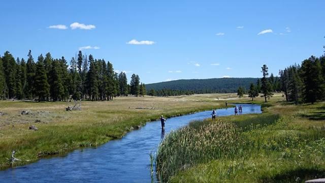 Yellowstone Day 3 Fly Fishermen