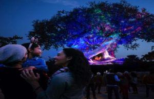 Take a Peak at New Holiday Decor at Disney's Animal Kingdom