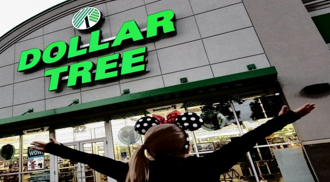 DOLLAR TREE TO DISNEY: 20 IDEAS FOR A MEMORABLE CHARACTER MEET AND GREET