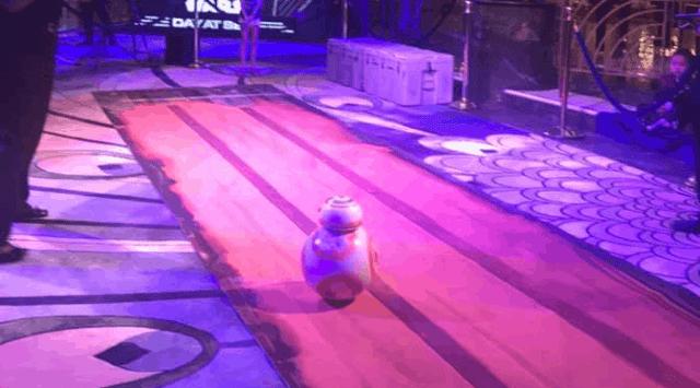 BB-8RACE