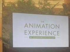 Animation Experience at Disney's Animal Kingdom