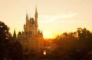Concerns over Cinderella Castle Makeover Clarified