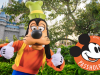 How to Activate an Annual Pass at Walt Disney World