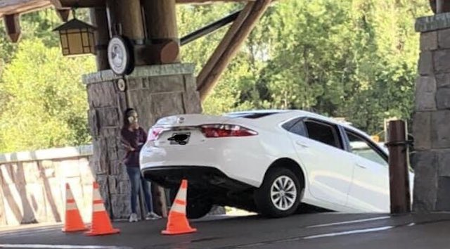 Photos: Guest Drives Car Down Stairs at Walt Disney World