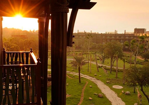 Complete Guide to Staying at Disney's Animal Kingdom Lodge