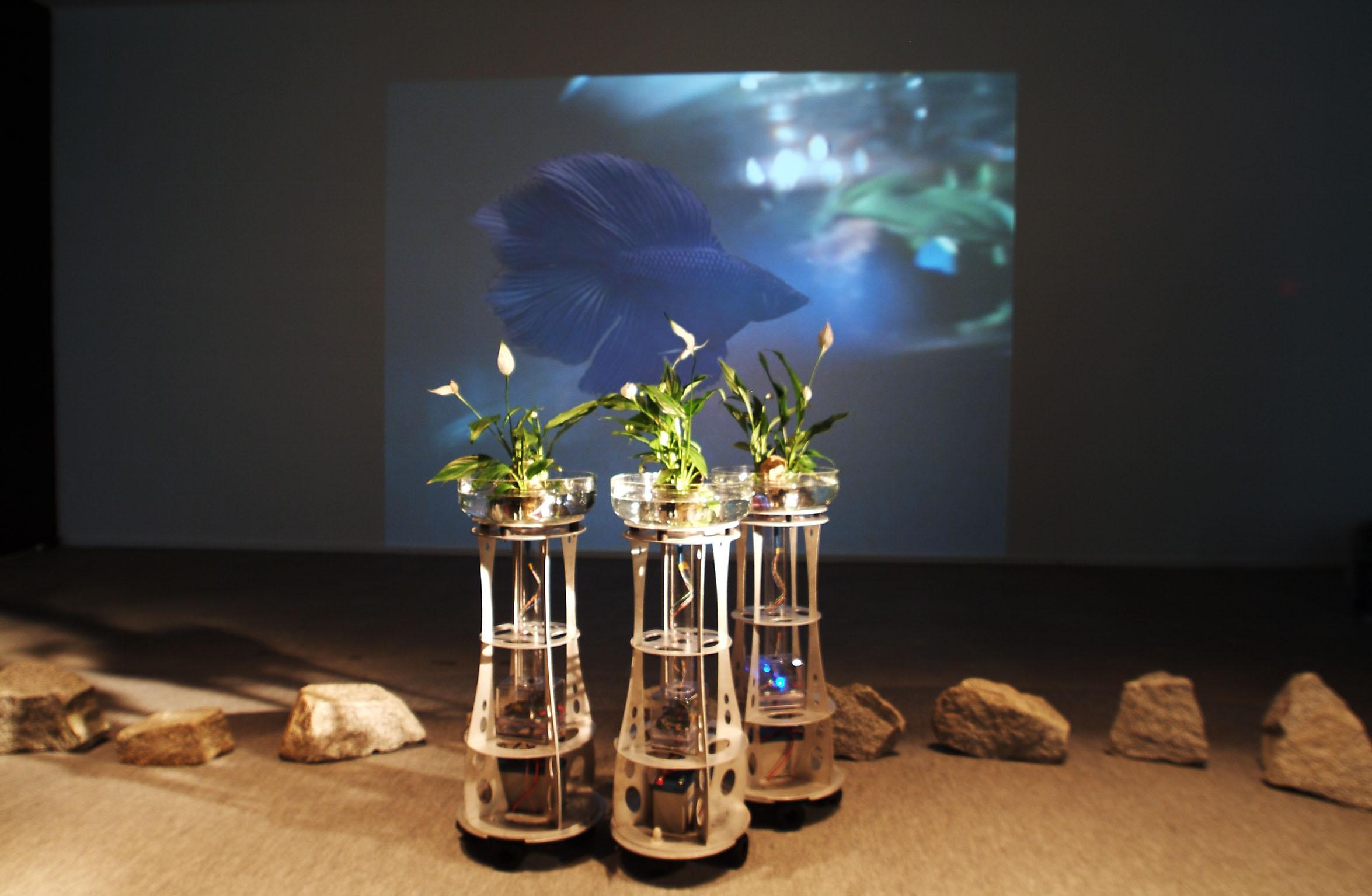 Augmented Fish Reality Ken Rinaldo