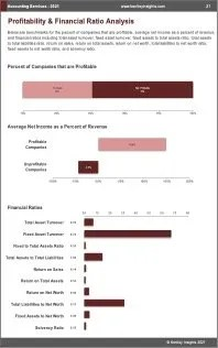 Accounting Services Profit