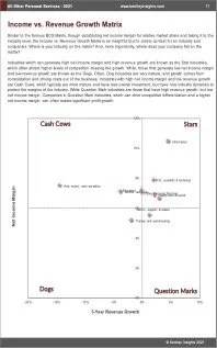 All Other Personal Services BCG Matrix