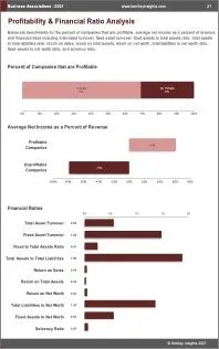 Business Associations Profit
