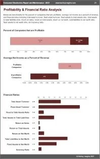 Consumer Electronics Repair Maintenance Profit
