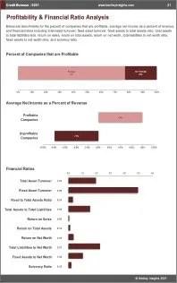 Credit Bureaus Profit