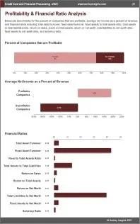 Credit Card Financial Processing Profit
