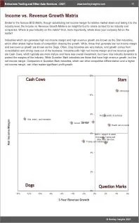 Emissions Testing Other Auto Services BCG Matrix