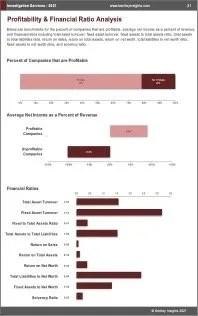 Investigation Services Profit