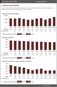 Iron Foundries Revenue
