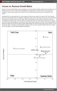 Other Ambulatory Health Care Services BCG Matrix