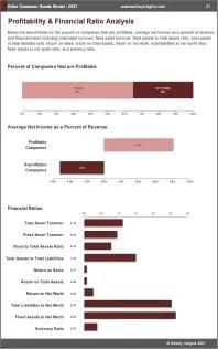 Other Consumer Goods Rental Profit