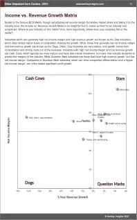Other Outpatient Care Centers BCG Matrix