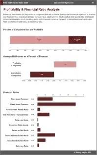 Print Copy Centers Profit