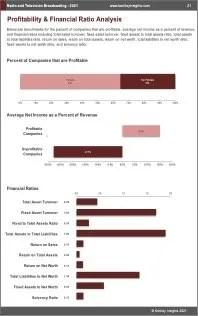 Radio Television Broadcasting Profit
