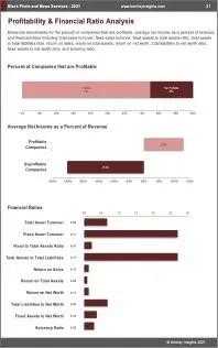 Stock Photo News Services Profit