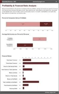 Translation Services Profit