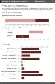 Wood Window and Door Manufacturing Profit