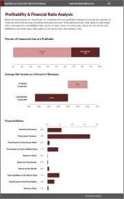 Appliance & Consumer Electronics Stores Profitability
