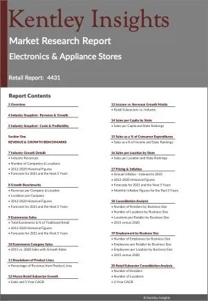 Electronics & Appliance Stores Market Research Report