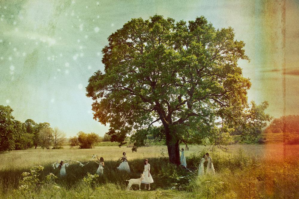Tree_X_1000