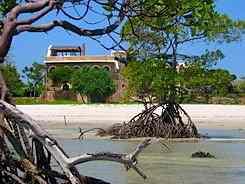Mwazaro Beach Mangrove Lodege Shimoni kenya