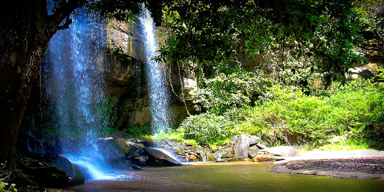 Kenya travel shimba hills safari one day