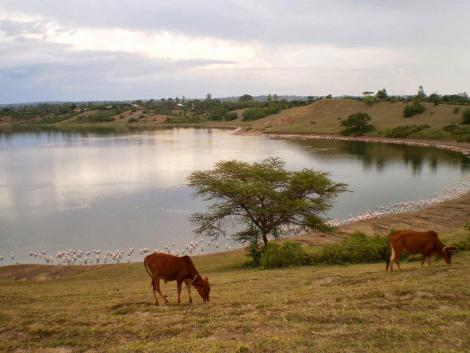 Lake Simbi Nyaima