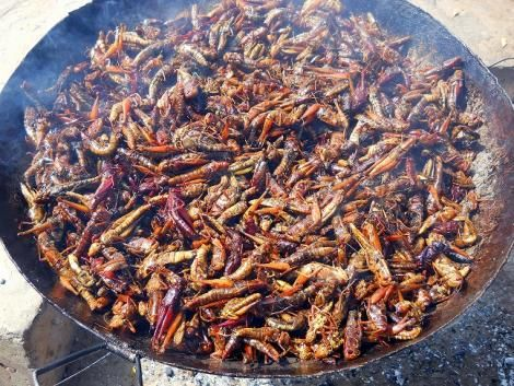A cooking pan filled with locusts.