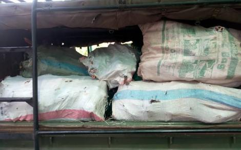 During the ambush, the police impounded two vehicles which were ferrying the sandalwood to Tanzania.