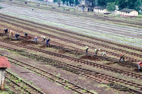 Nakuru Railway Yard