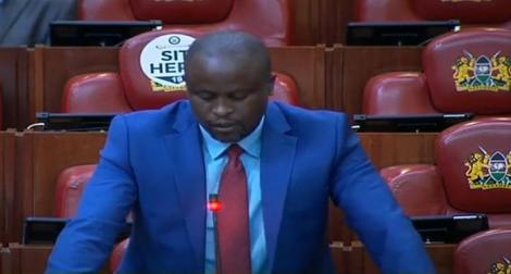 Kenya's Budget and Appropriations Committee Chairperson Kanini Kega speaking in Parliament on December 3, 2020.