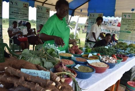A trader displays her farm produce from Kimira-Oluch irrigation scheme during World Food Day celebrations in Kendu Bay, Homa Bay County on October 16, 2019
