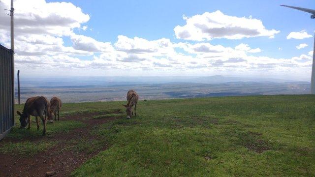 Best Travel Photos of 2017 - Hiking The Ngong Hills Kenya