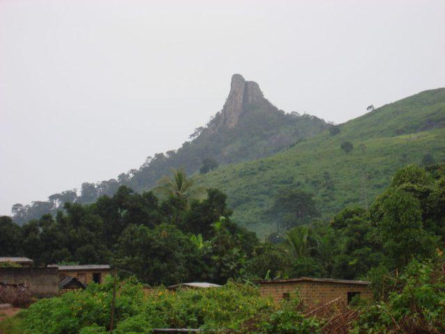 5 Affordable Ways To Enjoy Cote d'Ivoire DentDuMan