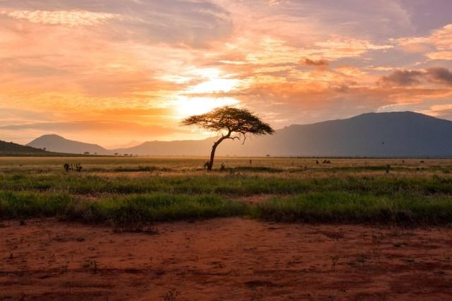 Sunset at Tsavo