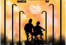 New Music Alert: Wangechi Feat Phy On Comeback