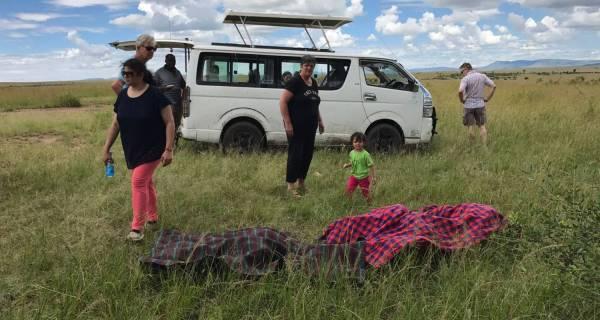 Guided Kenya African safari vehicles Adventure safaris